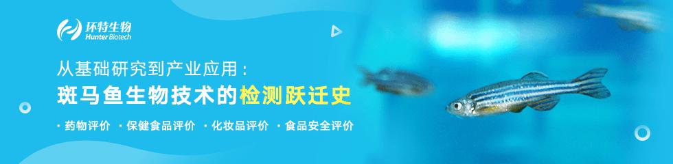 从化学检测到斑马鱼检测:斑马鱼生物技术的检测跃进史