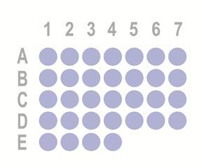 直肠癌32点组织芯片OD-CT-DgRec02-002