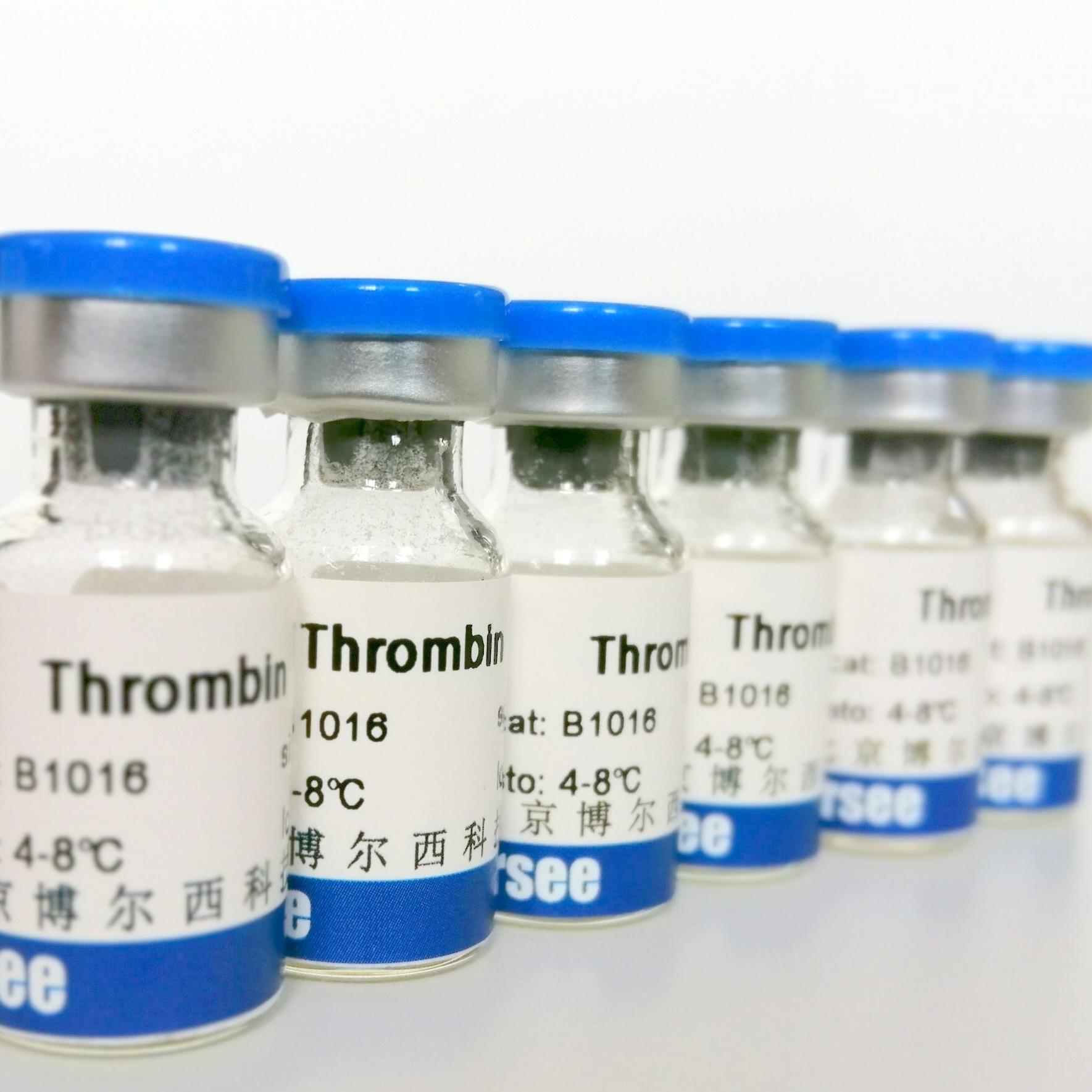 重组人抗胰蛋白酶(rh-AAT)
