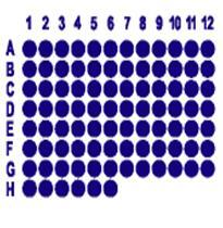 肺癌90点配套淋巴结组织芯片HLug-Squ090Lym-01
