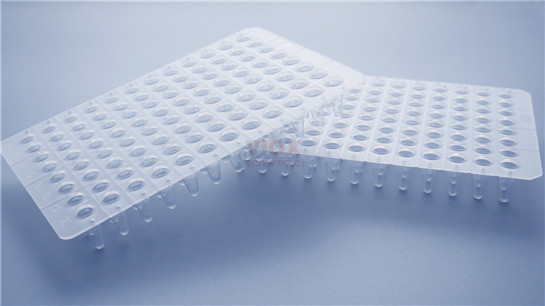 0.2ml 无裙边96孔PCR板