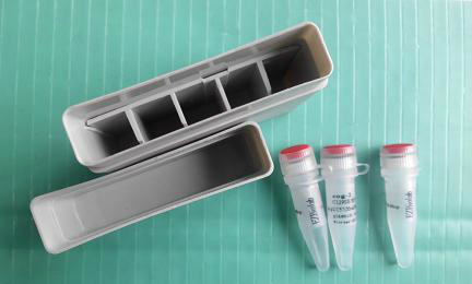 试用装-三色预染蛋白 Marker (11-245KD)