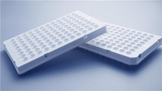 罗氏Roche 480专用PCR 96孔板
