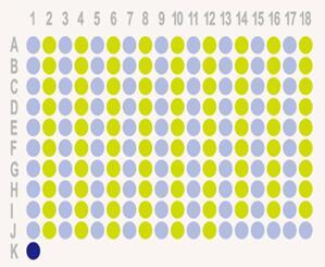 生存期结肠腺癌180点组织芯片HColA180Su11
