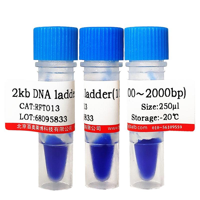 DMF溶剂(≥99%)现货供应