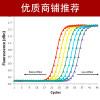 PCR试验技术外包服务(全国十佳技术服务企业)