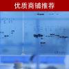 免疫共沉淀co-IP(全国十佳技术服务企业)