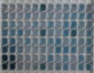 猪血小板因子4(PF4)检测试剂盒(酶联免疫吸附试验法)