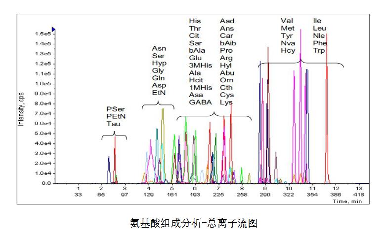 蛋白质综合分析