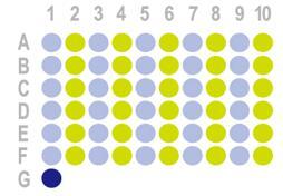 胃癌60点组织芯片HStm-Muc060CS-01