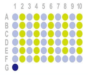结肠癌60点组织芯片HCol-Can060PT-01