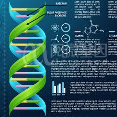 SNP/单核苷酸多态性分析