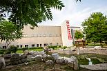 血液病研究院