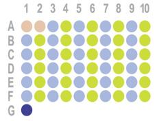 肝癌60点组织芯片HLivH060CS01