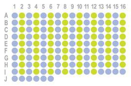 生存期胰腺癌150点HPanA150CS03