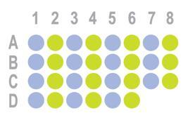食管癌30点组织芯片HEsoS030PG04