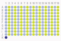 胃癌180点生存期组织芯片 HStm-Ade180Sur-07