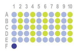 食管癌50点组织芯片HEsoC050PT01