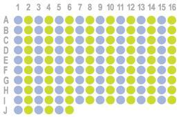 肝癌150点组织芯片HLivH150CS04