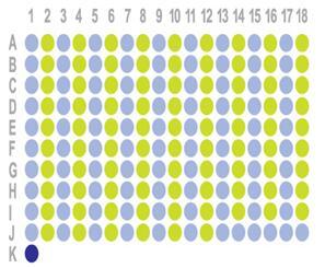 食管癌90点组织芯片OD-CT-DgEso04-006