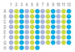 肝癌90点组织芯片HLivH090PG01