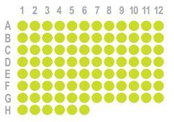 乳腺癌90点组织芯片HBre-Duc090Sur-01