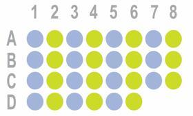 胃癌30点组织芯片HStm-Ade030PG-01