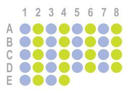 混合型肝癌36点组织芯片HLiv-mix036PG-01