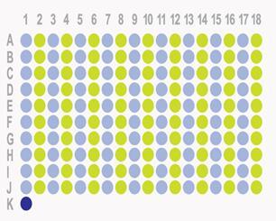 结肠癌180点组织芯片HRec-Ade180Sur-05