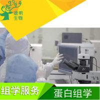 医学/植物蛋白组学 质谱鉴定 lc-msms鉴定