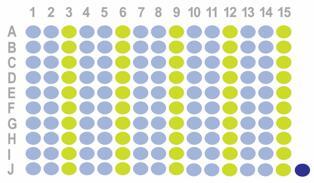 生存期乳腺癌150点组织芯片HBre-Duc150Sur-01 添加HBre-Duc170Sur-01(ER、PR、Her2、EGFR、Ki67、p53、AR、CK5/6)和FISH数据(Her2)