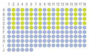 生存期子宫癌168点,HUteS168Su01