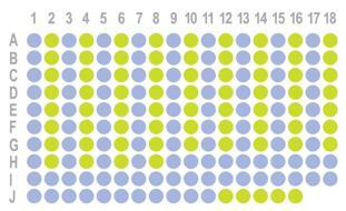 生存期胃腺癌178点组织芯片HStm-Ade178Sur-01