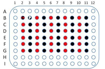 肝癌60点cDNA组织芯片,cDNA-HLivH060PG02
