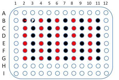 胃癌cDNA60组织芯片点,cDNA-HStmA060CS01