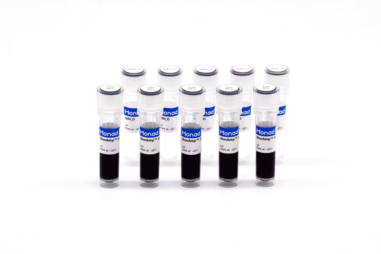 2×热启动PCR预混液(含染料)