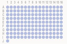 [乳腺癌,145点]HBreD145Su02 添加HBre-Duc170Sur-01(ER、PR、Her2、EGFR、Ki67、p53、AR、CK5/6)和FISH数据(Her2)