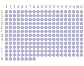 肾癌248点组织芯片OD-CT-UrKid01-004