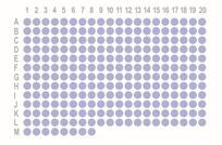 肾癌248点组织芯片OD-CT-UrKid01-005