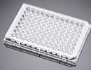 层粘连蛋白包被的96孔板(透明 带盖)