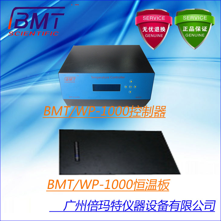 供应实验室用小型可调式数显恒温板BMT/WP-1000电热板