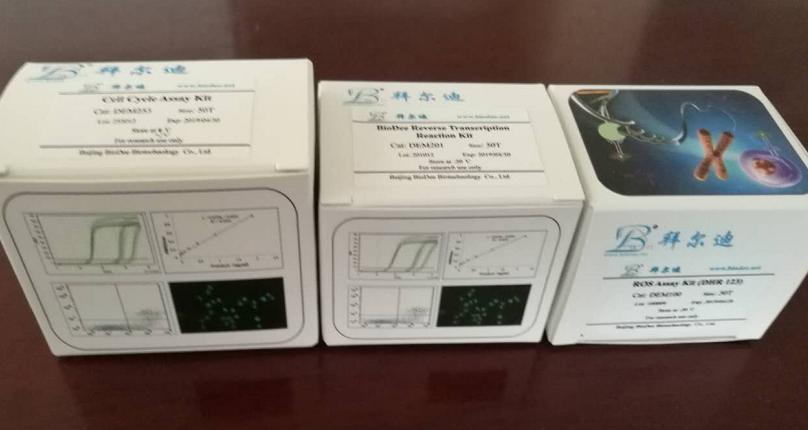 Bradford 蛋白浓度测定试剂盒