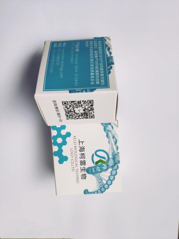 pLentiCRISPRV2GFP质粒即用试剂盒