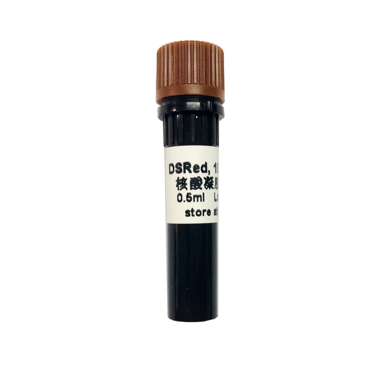 新型无毒DSRed核酸凝胶染料 10,000× M7022