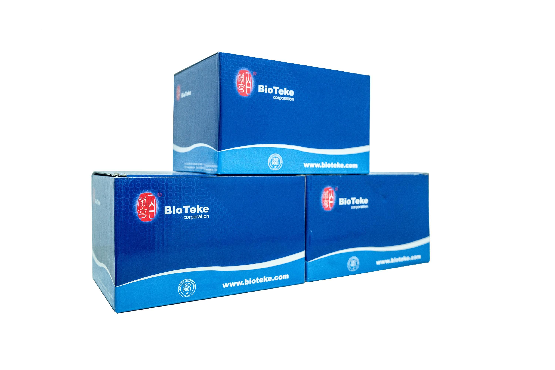 石蜡包埋组织microRNA快速提取试剂盒