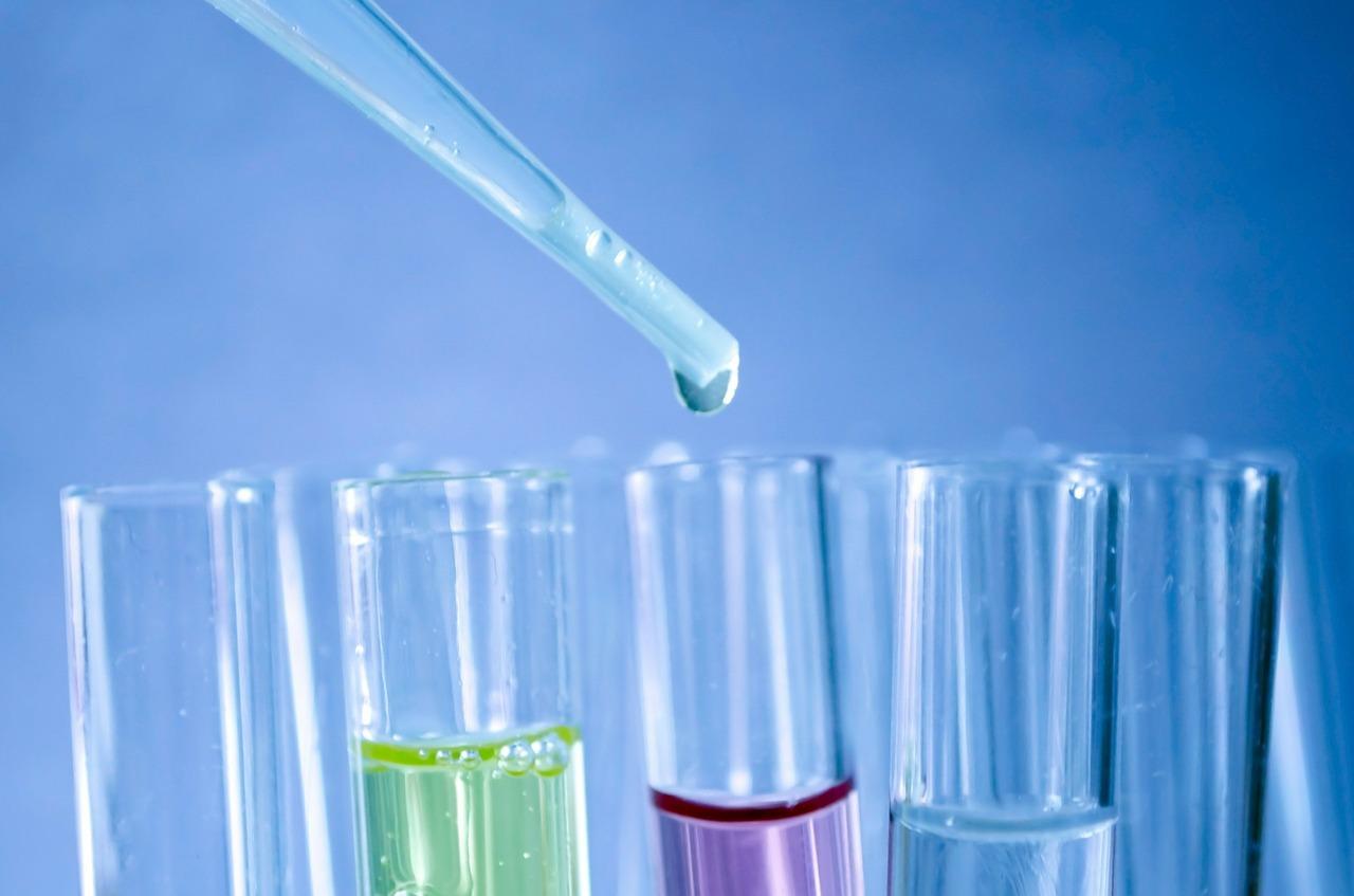 转录组miRNA 测序