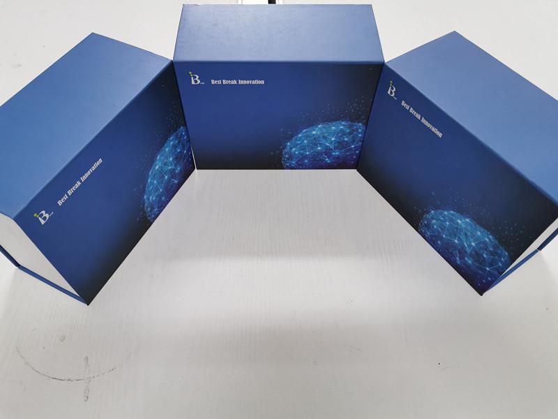 大鼠P物质ELISA试剂盒原理