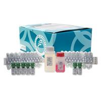 胰岛素样生长因子(IGF-1)放免分析药盒