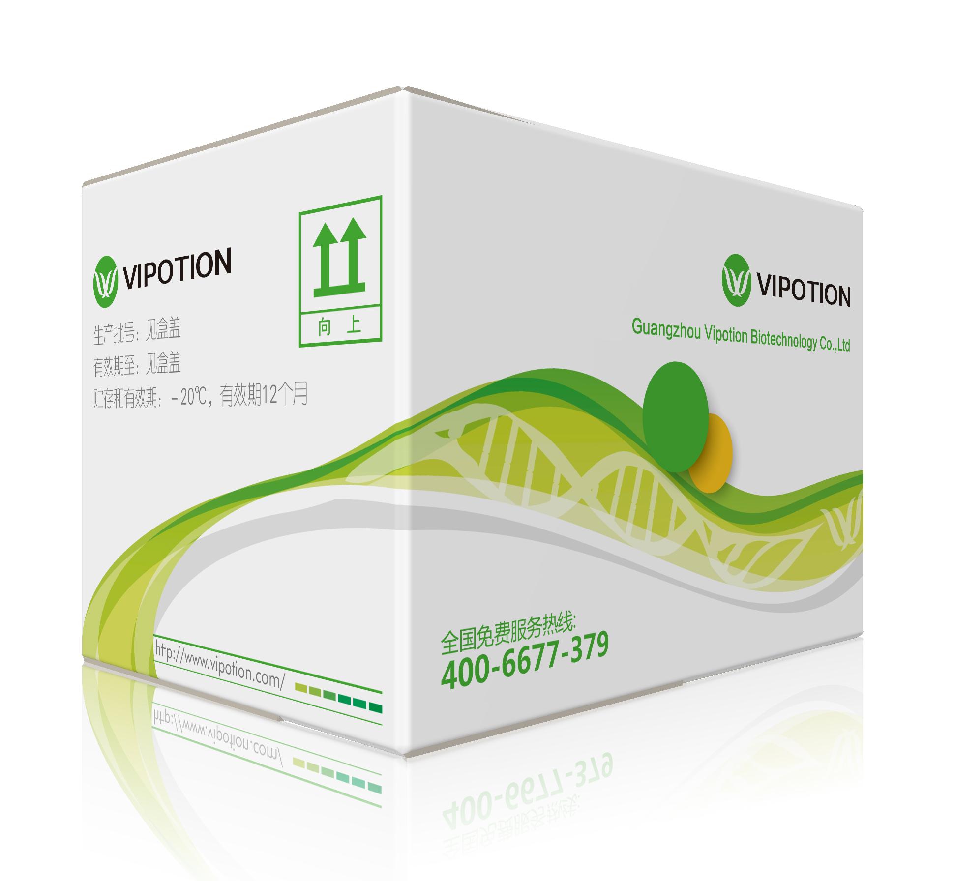 犬细小病毒(CPV)核酸检测试剂盒(PCR法)