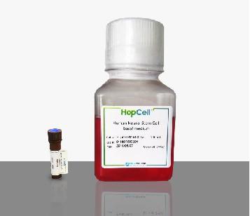 人神經前體細胞培養液